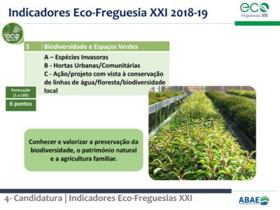 1.Eco-Freguesias_ABAE_11out57