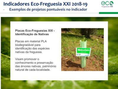 1.Eco-Freguesias_ABAE_11out58