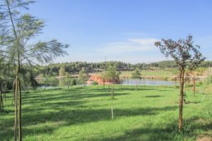parque-verde-lagoa-do-falcão-tratada-baixa